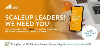 ScaleUp Survey 003
